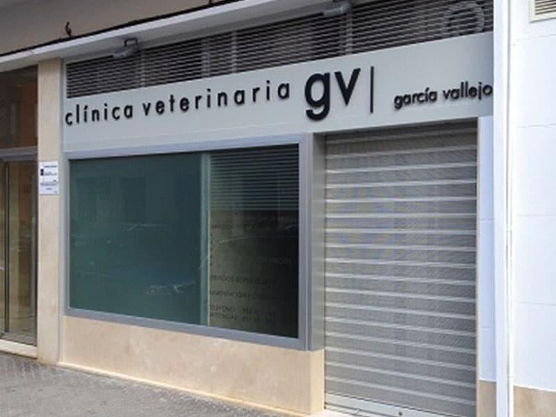 galeria-1-veter